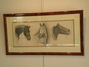 Etude de tête de chevaux.