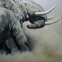 Comat de deux grands mâles à Amboseli. Julie Salmon