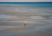 La solitude du pêcheur de crevettes. Mfd