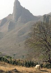 Les monts du Mandara région de Mokolo.
