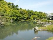 Jardin japonais 5. Toshio Asaki