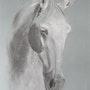 Ritournelle du Coussoul, ma jument, douce, agréable et sensible. Myriam Michelin