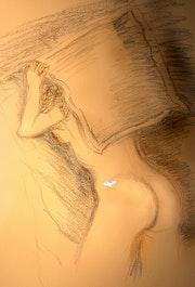 Courbes douces de ce nu. Annick Marin «Effraction»