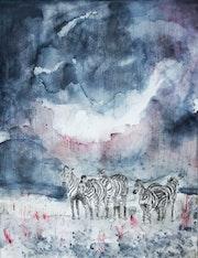 Zebres sous la pluie.