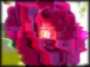 «La Rose».