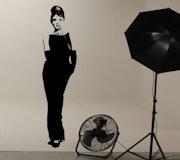 Audrey Hepburn - Breakfast at Tiffany's - Wall Art. Wallart Studios