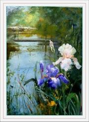 Vue d'un étang et Iris.