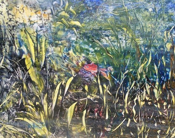 Mangrove. Nadette Tournier Nadettetournier