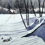 Perdue dans le froid. Jean-Guy Carier