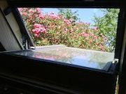 L'été petite fenêtre du toit laurrier rose une île dans l'Adriatique Croatie.