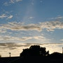 The Dawning day. Willssb