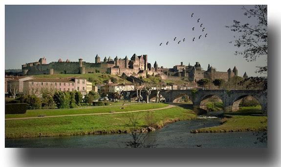 Passage des Grues sur Carcassonne. Gilles Bizé Gilles Bizé