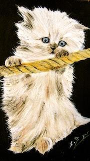 Mon chaton blanc.
