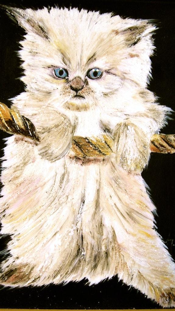 Mon autre chaton. Sophie Boyer Jade