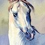 Tête du cheval blanc. Marcel Boos