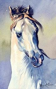 Tête du cheval blanc.