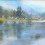Lac de montagne. Daniele Trigalet