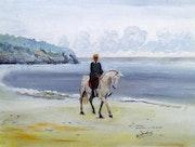 Falco sur la plage des Govelins.