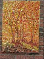 Lumières d'automne. Anne R