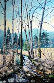 Fin d'hiver dans les Vosges. Dany Trianon