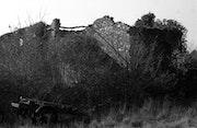 Paysage de la provence. Girard Claire