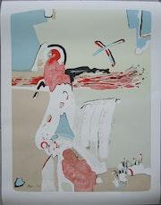 Vaclav Benedikt signierte grosse Lithographie Papagei 78/84.