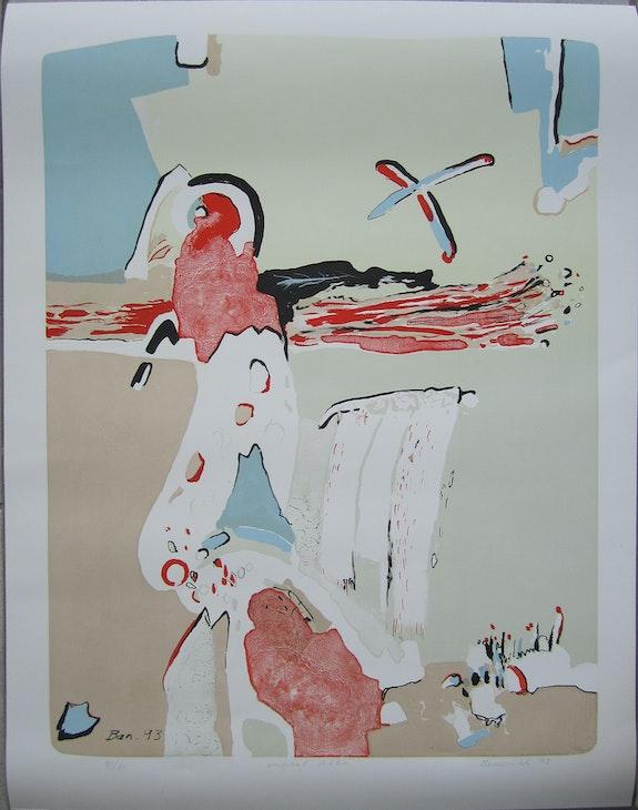 Benedikt handsigned lithograph Parrot 78/84. Vaclav Benedikt Elcoco