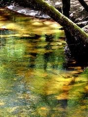 Le ruisseau d'ocre… (2).