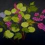 Le Bouquet de mon jardin de rêve !. Joper