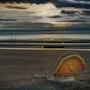 Entre terre, ciel et mer. Philippe Wertz