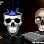 Crazy skull. Photos_Graphein