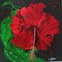 Ibiscus rouge (thème créole). Ghislaine Phelut