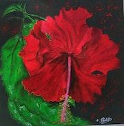 Hibiscus rouge (thème créole).