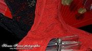 «Le Rouge et le Noir» still life. Photos_Graphein