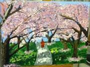 Ballade sous les cerisiers du japon.