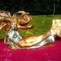 Nymphéa des mers en sculpture. Sybartiste