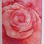 Rosée matinale. Christian Poncet
