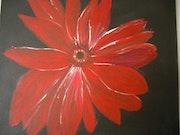 Fleur rouge sur fond noir.