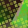 Nuances de jaunes sur fond bordeaux et vert. Paule r