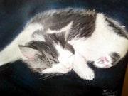Mon chat endormi.