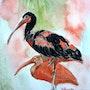 2 Oiseaux exotiques. Yokozaza