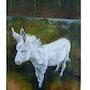 Le petit âne blanc de Kirsch Les Luttange. La Souris Verte