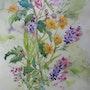 Fleurs d'été 3 :Anémones du Japon, soucis et pieds d'alouettes.. Françoise-Elisabeth Lallemand