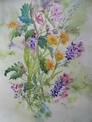 Fleurs d'été 3 :Anémones du Japon, soucis et pieds d'alouettes..