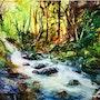 Ruisseau en sous bois. Sobamo