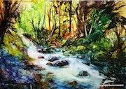 Ruisseau en sous bois.