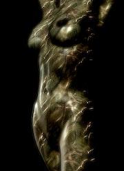 Körperlinien. Chris Engels