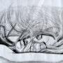 Sous le vent. Jean Claude Ciutad-Savary. Artiste Peintre
