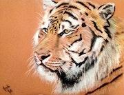 Tigre de Sibérie.