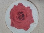 Plato de cristal-una rosa. M. Pilar